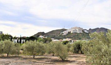 Mojácar Country House