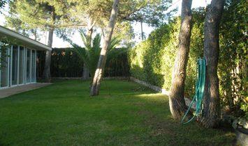 Banyeres de Mariola Villa