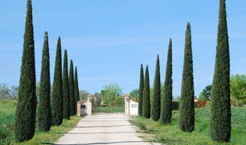 Farmstead / Courtyard for sale in Cortona