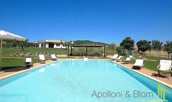 Farmstead / Courtyard for sale in Capalbio