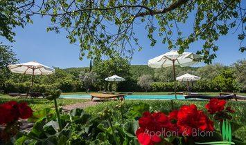 Farmstead / Courtyard for sale in Cetona