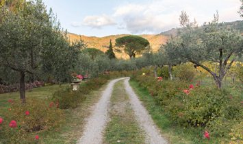 Farmstead / Courtyard for sale in Cortona