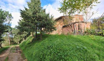 Farmstead / Courtyard for sale in Sinalunga