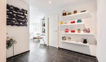 Bright corner apartment with terraces