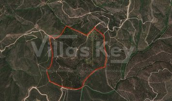 30ha land with dam in Silves