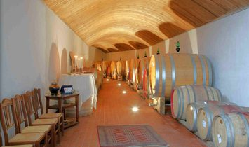 HIGH-END WINERY