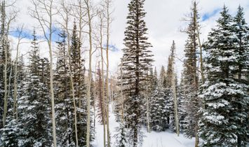 Exclusive Red Cloud New Construction With Perfect Ski Access