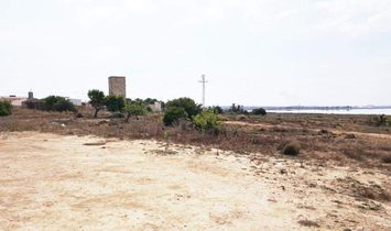 Torrevieja Plot