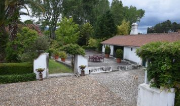 Excellent QUINTA 20 minutes from Coimbra