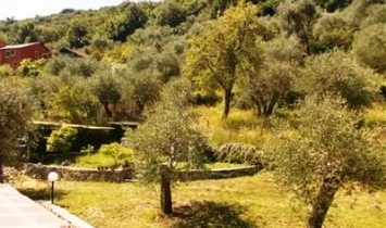 SANTA MARGHERITA HILL  surrounded by the tranquility of olive trees delightful small villa