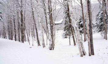 Lake Mercier