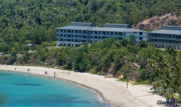 Frangipani Lodge 104