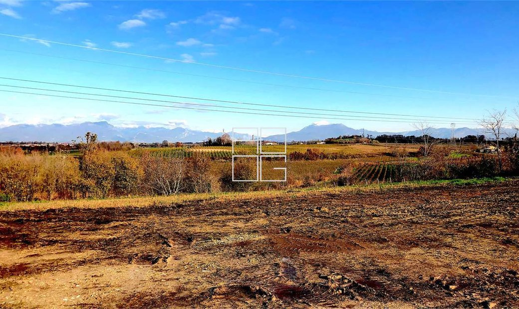Terreno vitato in Lugana DOC