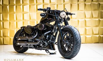 HARLEY-DAVIDSON FORTY EIGHT MODIFIED BY DARK PARTS MOTORCYCLES