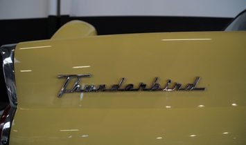 FORD USA THUNDERBIRD Cabrio/Roadster 3drs