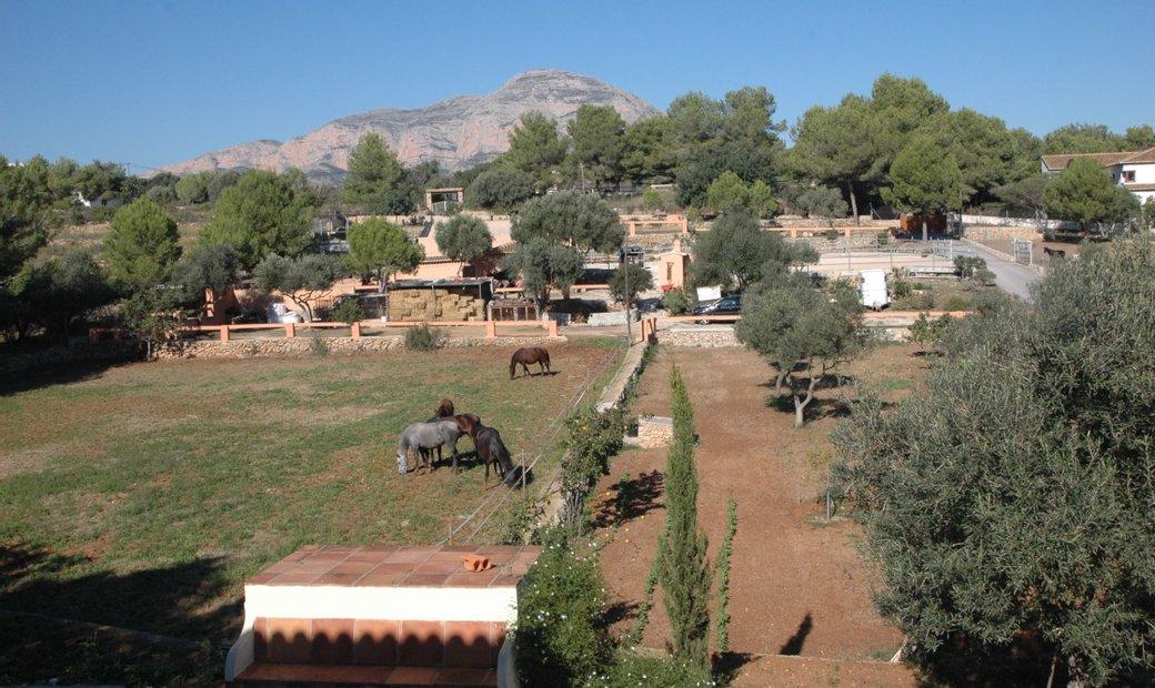 Javea Equestrian Facility