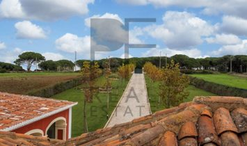 Dwelling house of exceptional quality and good taste in perfection in the romantic and bucolic surro