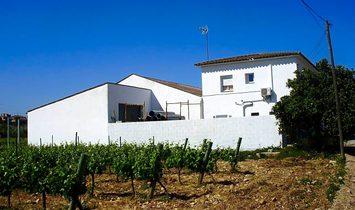 Santa Margarida i els Monjos Country House
