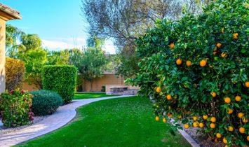 Citrus Preserve