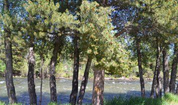 River West Condos