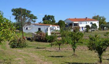 Quinta São José-V1 in Castelo Branco
