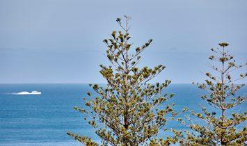 Panoramic Indian Ocean Views