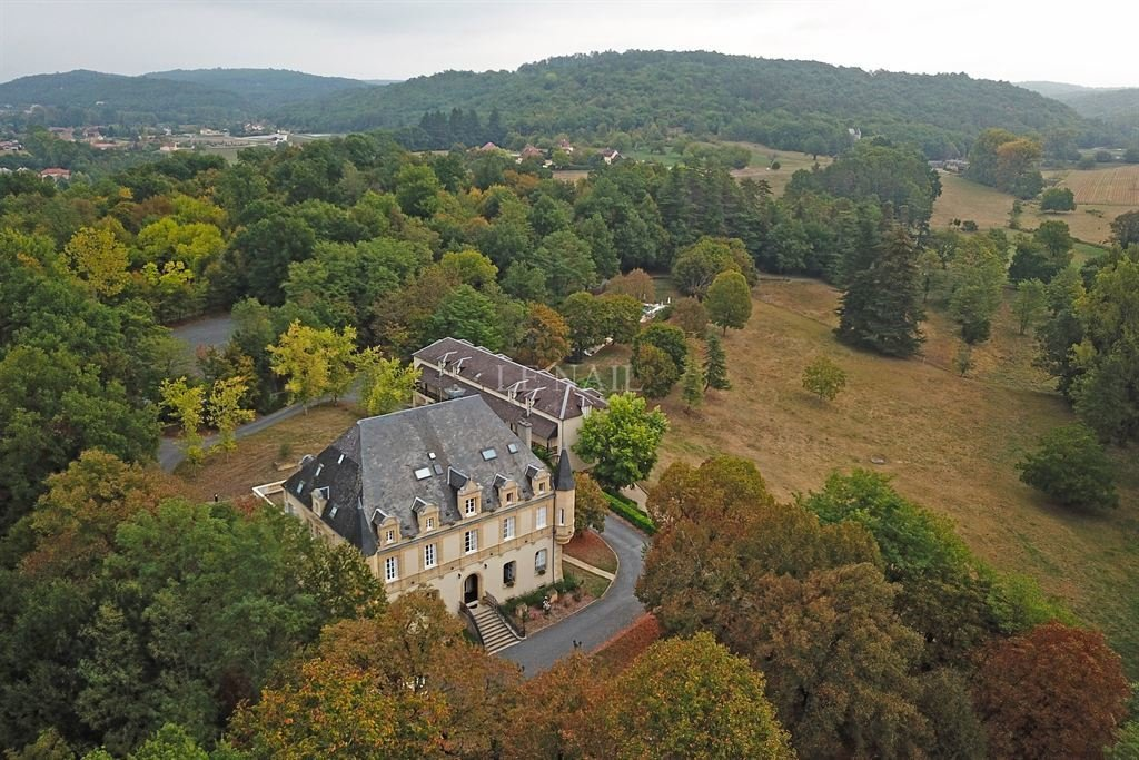Beautiful Chateau For Sale In Dordogne In Montignac France For