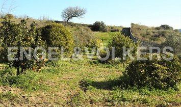 Farm With 9 Hectares, Arruda Dos Vinhos