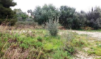 Marbella Golden Mile Plot without project
