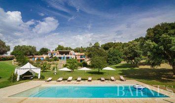 Sale - Villa Saint-Florent