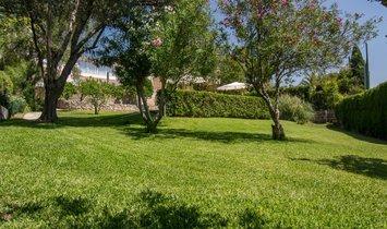 San Pedro de Alcantara Villa