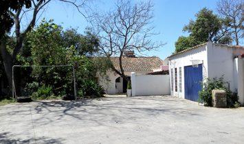 Los Barrios Finca