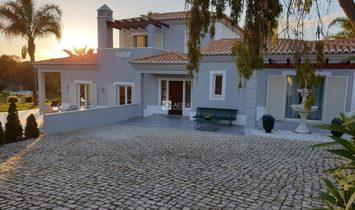 Villa V3.
