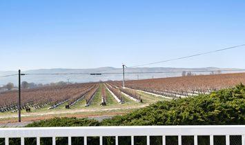 Irrigation, Apples/ Wine Grapes