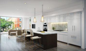 Amazing Wicker Park Duplex Penthouse