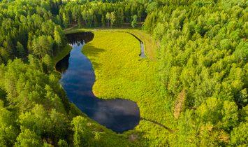 Земля в Vyžulionys, Вильнюсский уезд, Литва 1