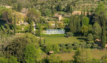 Country House in Lorgues, Provence-Alpes-Côte d'Azur, France 1