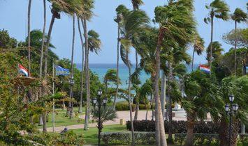 Condo in Oranjestad-West, Aruba 1