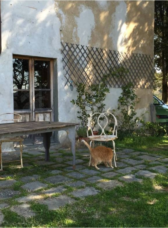 Country House in Tuscany, Italy 1 - 11002493