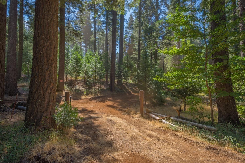 Land in Pollock Pines, California, United States 1