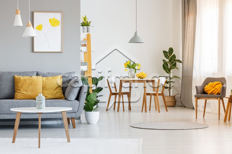 Apartment in France 1 - 10928208