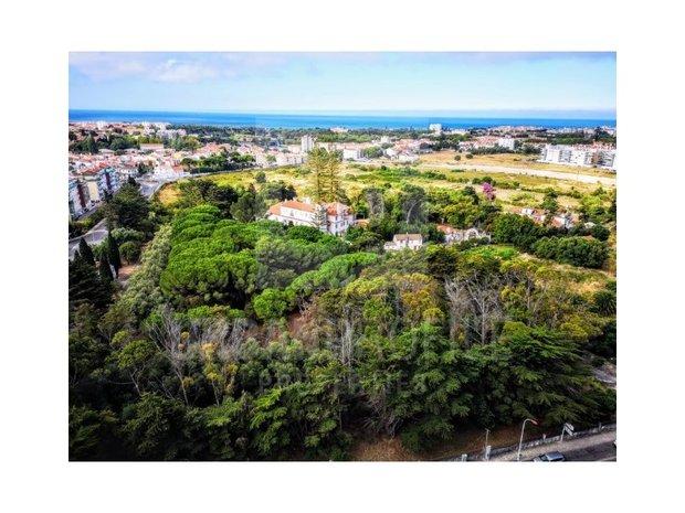 Apartment in Carcavelos, Lisbon, Portugal 1