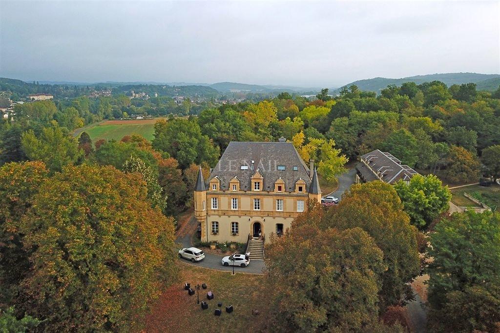 Castle in Montignac, Nouvelle-Aquitaine, France 1