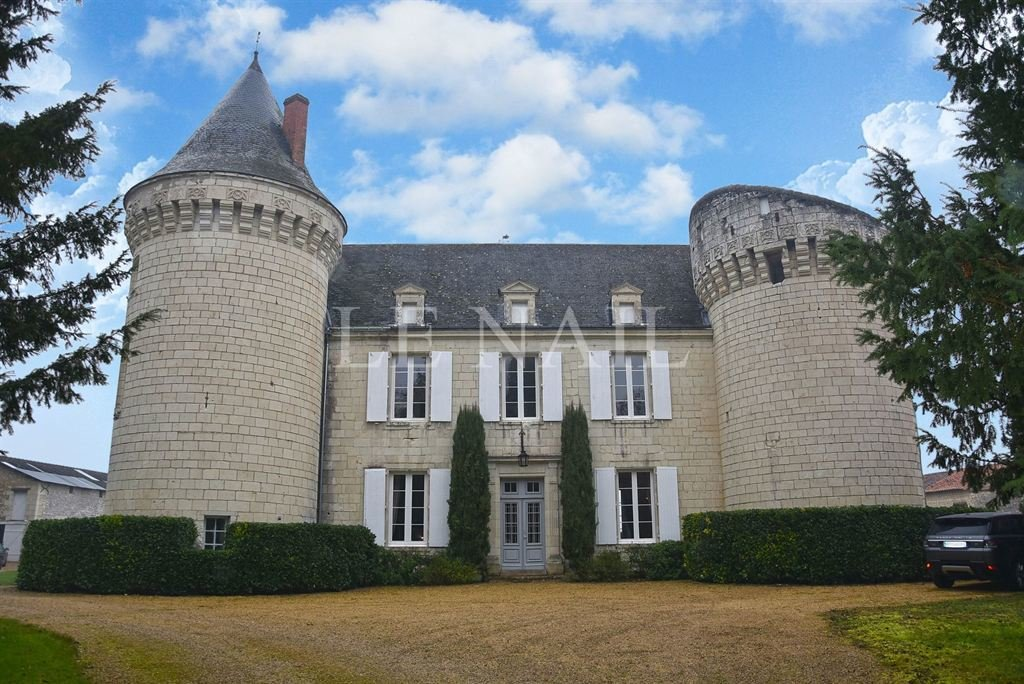 Castle in Loudun, Nouvelle-Aquitaine, France 1 - 10718998