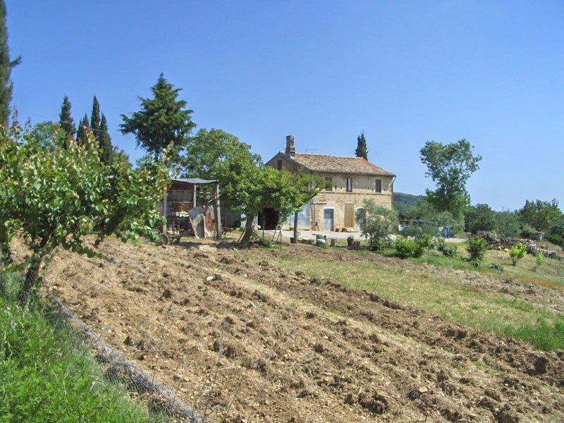 Farm Ranch in Moresco, Marche, Italy 1 - 10734028