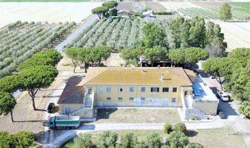 Farm Ranch in Orbetello, Tuscany, Italy 1