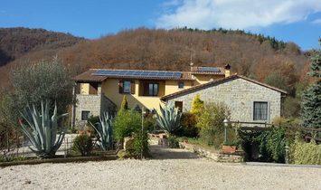 Lisciano Niccone, Umbria, Italy 1