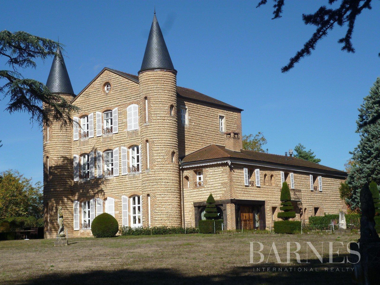 Castle in Châtillon-sur-Chalaronne, Auvergne-Rhône-Alpes, France 1