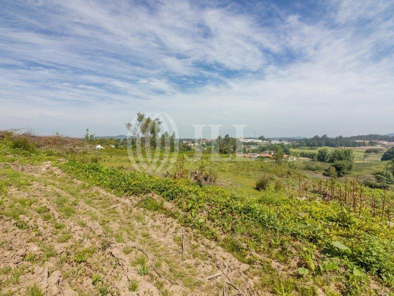 Farm Ranch in Vila Nova de Famalicão, Braga, Portugal 1