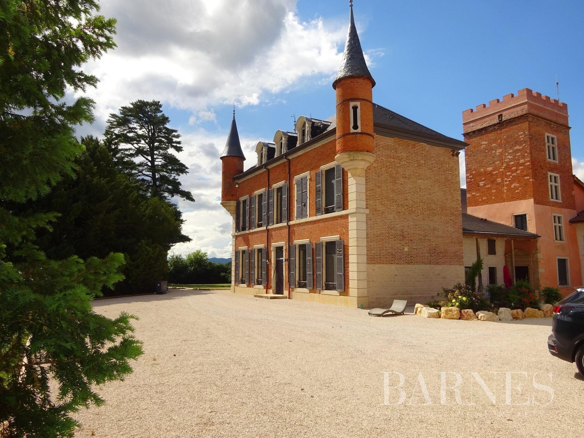 Castle in Grièges, Auvergne-Rhône-Alpes, France 1